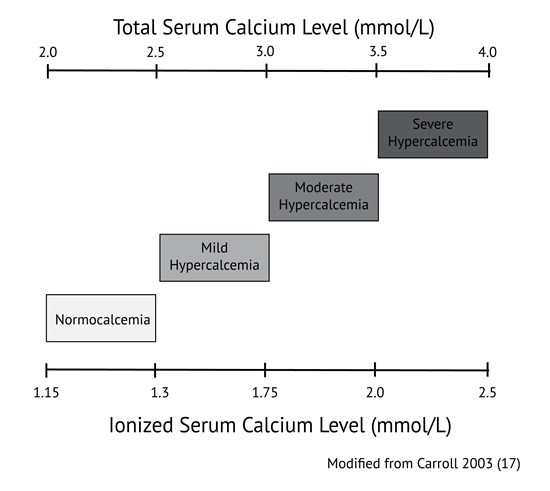 slightly elevated calcium levels in blood